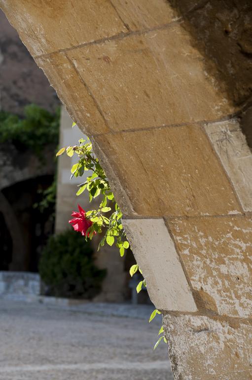 Dordogne 6047