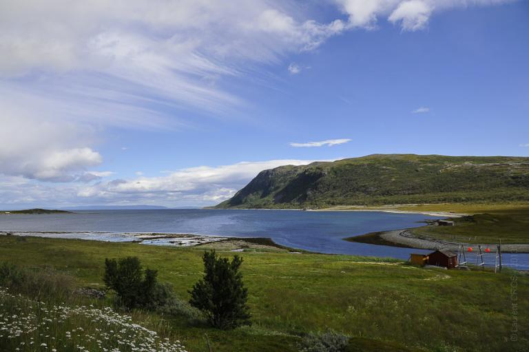 Norvège 3660