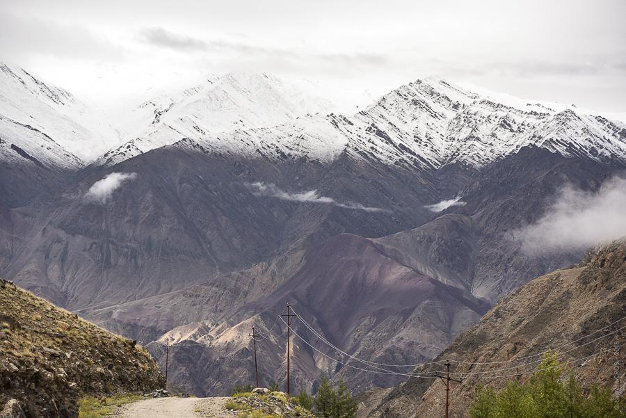 Ladakh 4398