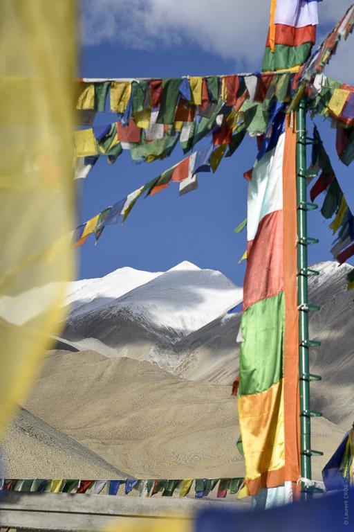 Ladakh 4676