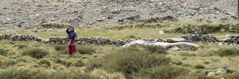 Ladakh-4422