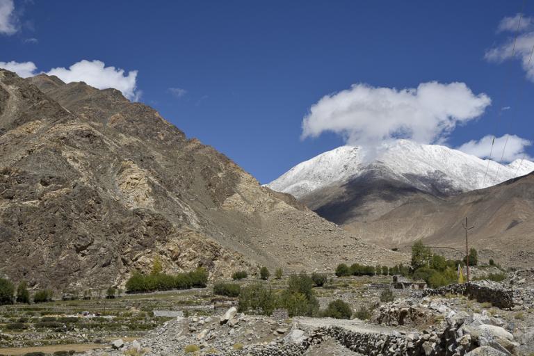 Ladakh-4484