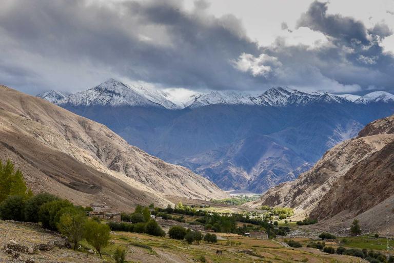 Ladakh-4494