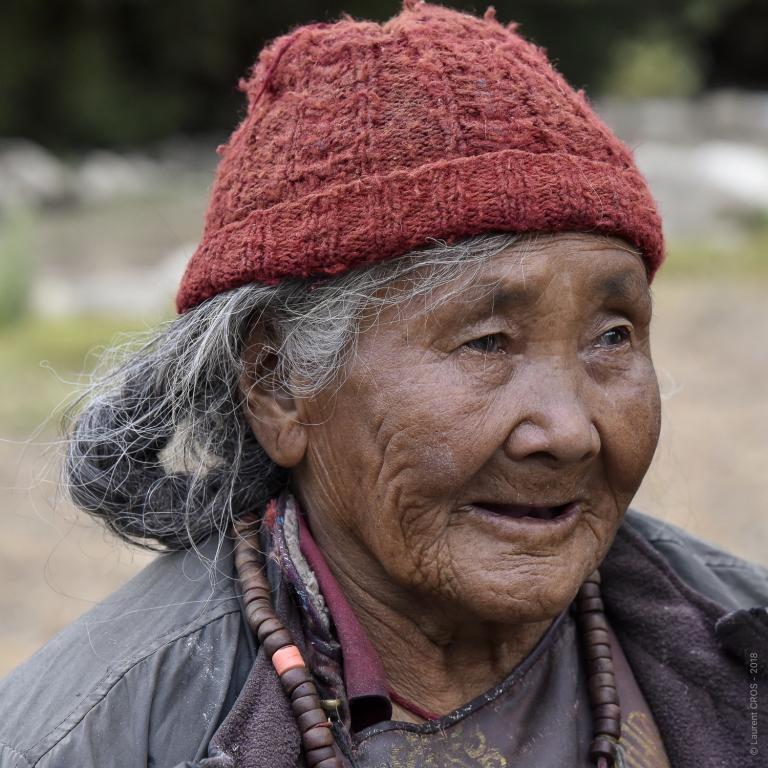 Ladakh-4549