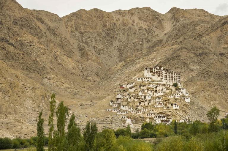 Ladakh-4569
