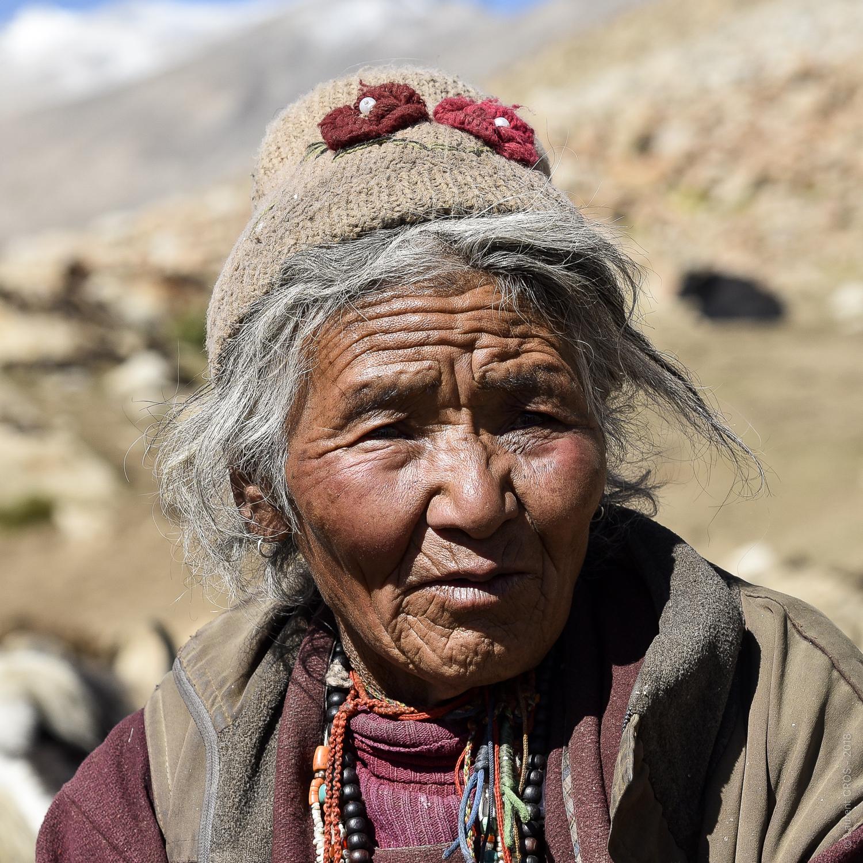 Ladakh-4772